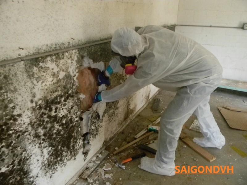 Xử lí chống thấm tường bị ẩm mốc