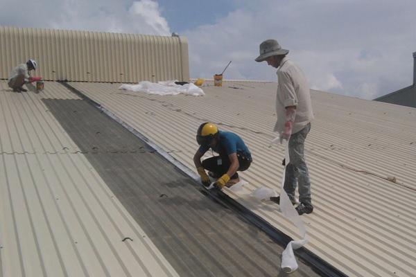 Xử lí sửa chữa mái tôn
