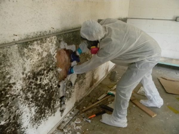 Xử lí chống thấm tường nhà