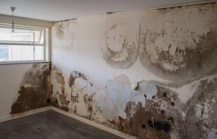 Thấm tường làm cho ngôi nhà bị xuống cấp trầm trọng